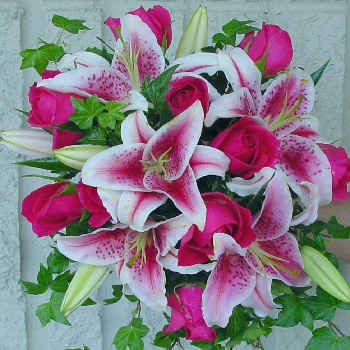 fleurs41